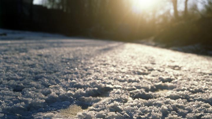 Из минуса в плюс: Кубань ждет весенняя погода посреди зимы
