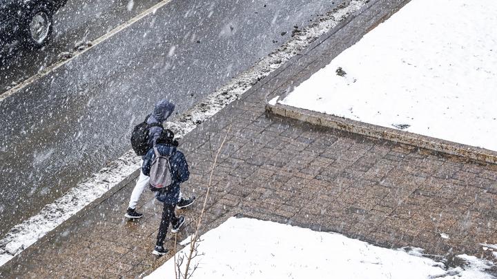 Погодные неприятности: жителей Ленобласти ожидают проблемы на дорогах и гололедица