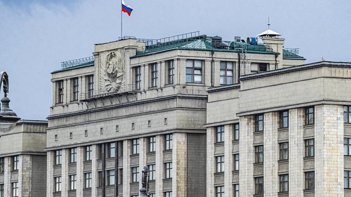 Семь новосибирских депутатов разработали в Госдуме сотни законопроектов