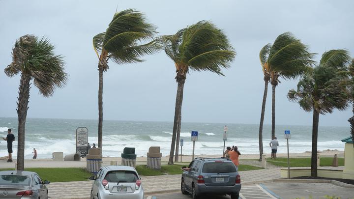 Дориан распотрошил заначки наркобаронов: На побережье Флориды волны выбросили пакеты с кокаином