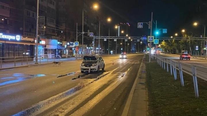 Двоих одним ударом: в Самаре водитель сбил сразу двух человек
