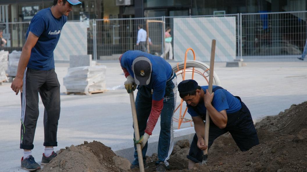 Государственная дума ратифицировала соглашение сУзбекистаном опривлечении трудовых мигрантов