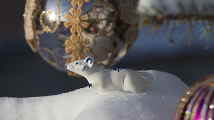 Главный праздник - Рождество: В России предложили понизить статус Нового года