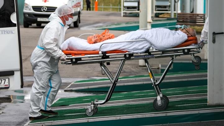 Пять пациентов с коронавирусом умерли в Кузбассе, общее число достигло 1009