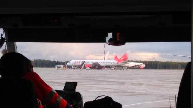 В Омске куропатки остановили лайнер, вылетавший в Москву