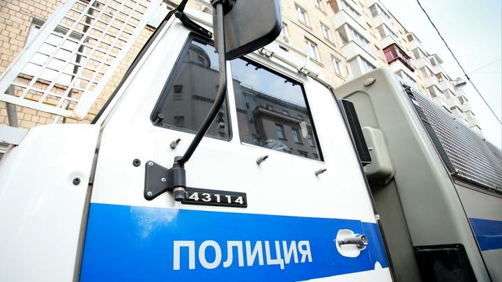 Бунт журналистов в Москве: Задержаны более 10 пикетчиков в поддержку Сафронова