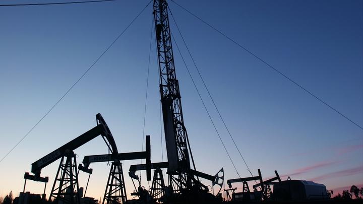 Баланс выверен: Путин доволен ситуацией на мировом энергорынке