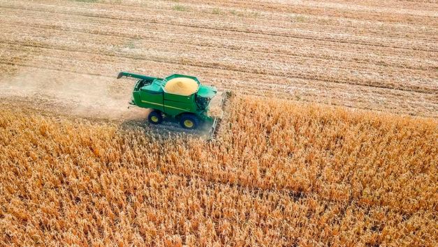 Битва за урожай: Правительство против аграриев