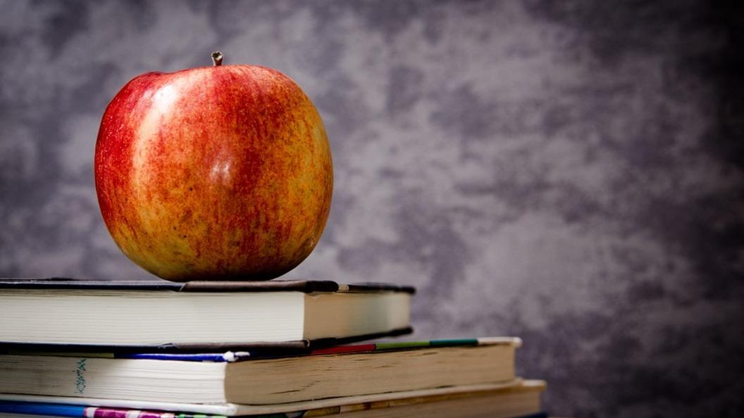 Не поделили: Учительница влепила пощечину коллеге в ответ на замечание об опоздании