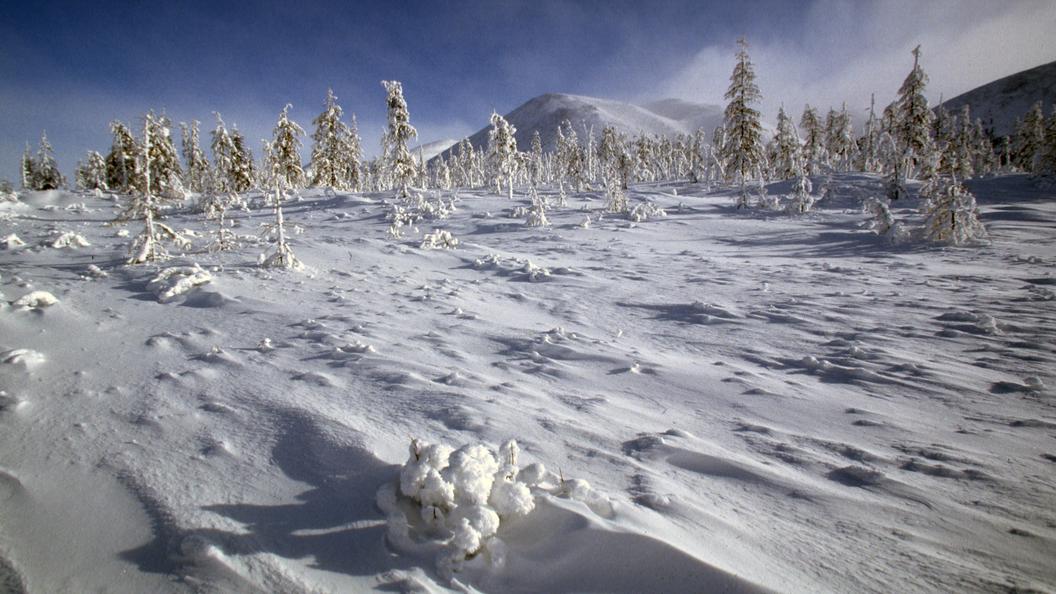 На поселок Удачный в конце августа обрушился аномальный снегопад