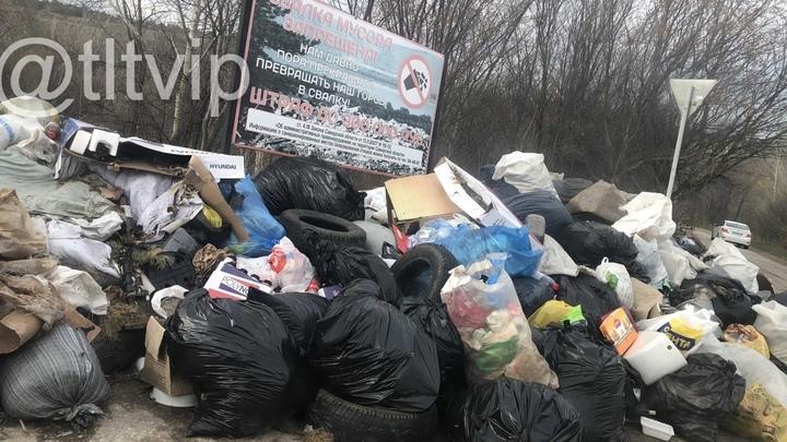 Жители Тольятти жалуются на кучи мусора