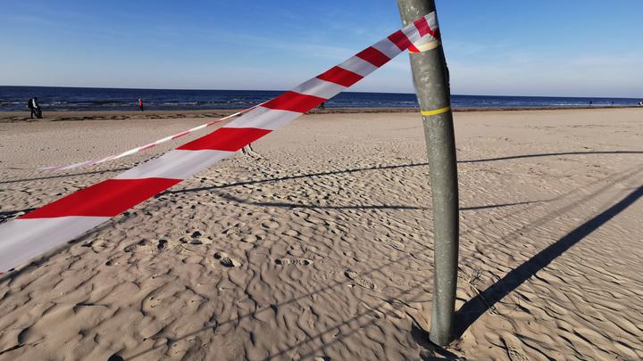 Причины закрытия Центрального пляжа в Академгородке назвали в Новосибирске