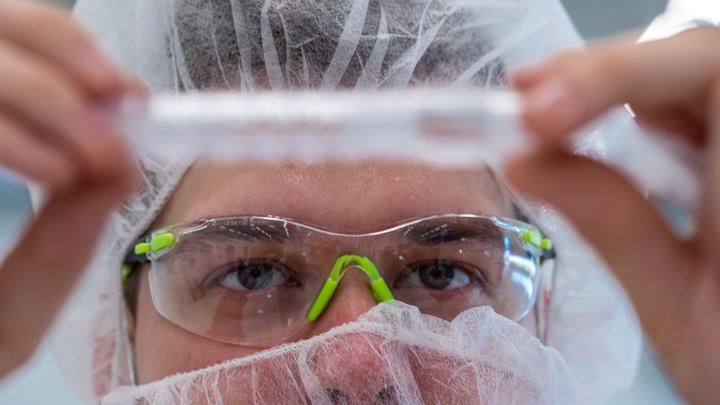 Ни за что не догадаетесь: Учёные назвали продукт, предотвращающий развитие диабета