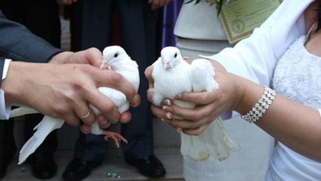 Аналитики выяснили, на что тратят деньги семьи в Челябинской области