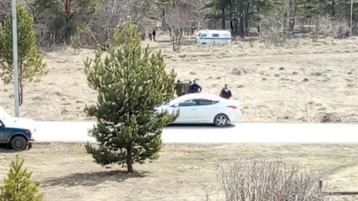 Расчлененный труп девушки обнаружили в лесополосе в Кузбассе