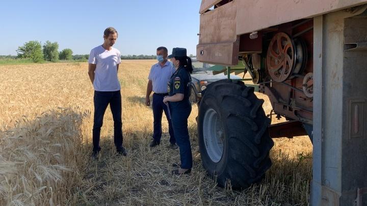В Ростовской области огонь уничтожил 65 гектаров пшеницы. Кто виноват, известно