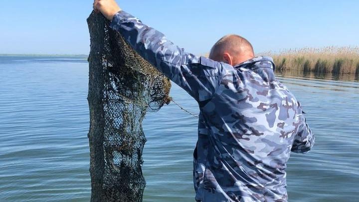В Ростовской области началась масштабная охота на браконьеров: Кто не успел, тот...