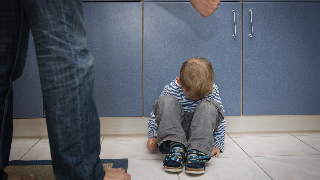 В Российской Федерации может появиться список недобросовестных родителей иопекунов