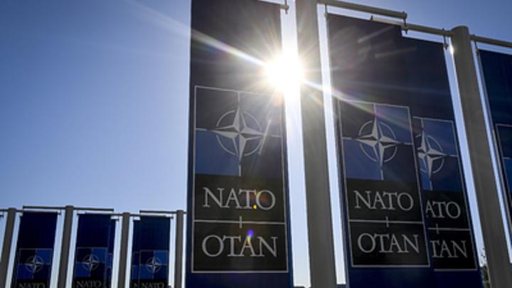 «Базы НАТО на Украине - это смешно»: Эксперт указал на здравый смысл альянса и США