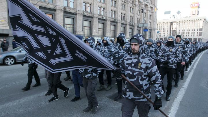 Чтобы эскапады поляков воспринимались с иронией: Герой России нашел способ борьбы с пропагандой в Европе