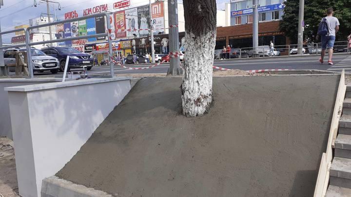 Чиновников так бы закопать: в Самаре на Московском шоссе дорожники закатали дерево в бетон