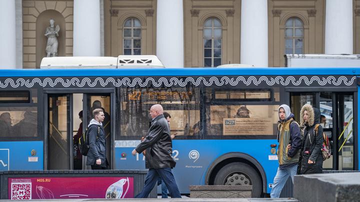 Отследит и… обеззаразит: Воронежские учёные подготовили новинку для общественного транспорта