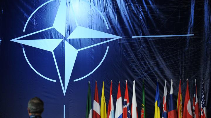 Посол Франции в Киеве оценил шансы Украины вступить в НАТО
