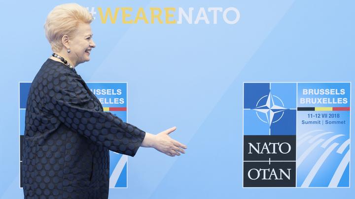 Подарок России. НАТО погубит женщина