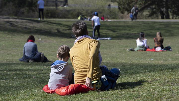 Траншеи по 10 гробов в ряд: Жертв коронавируса в Нью-Йорке предложили хоронить в парках