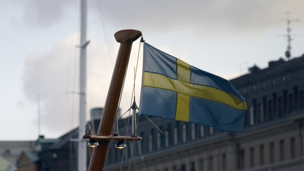 В Швеции все-таки будут раздавать геев на передержку