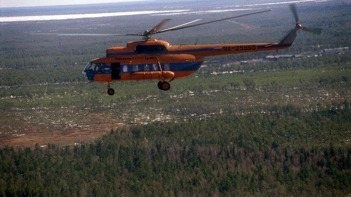 В Ленобласти пироман ранил полицейского и скрылся в лесу