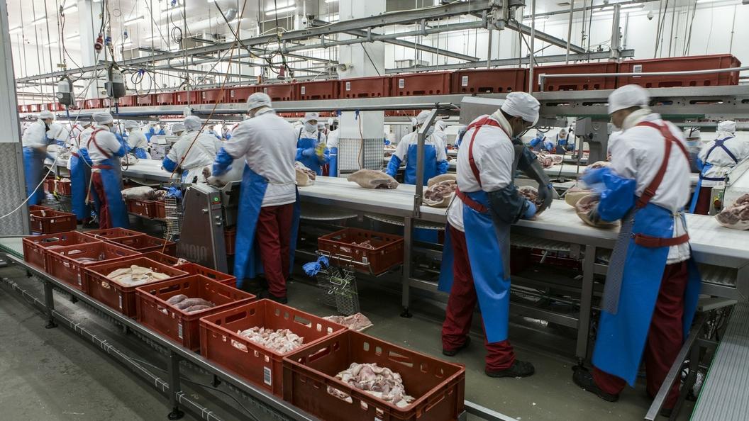 Турецкие помидоры вытеснили томаты изАрмении— Минсельхоз РФ