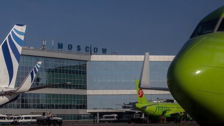 Пассажир-«смертник» устроил переполох в аэропорту Домодедово