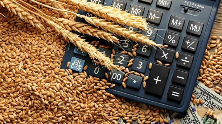 Сельское хозяйство России ушло в стагнацию: Причины падения