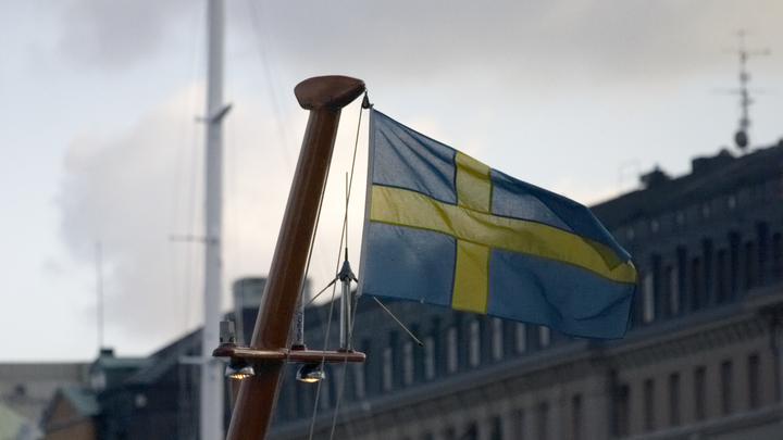 У Швеции появились свои «голубые береты»: Целый раздел сайта Минобороны посвящен геям