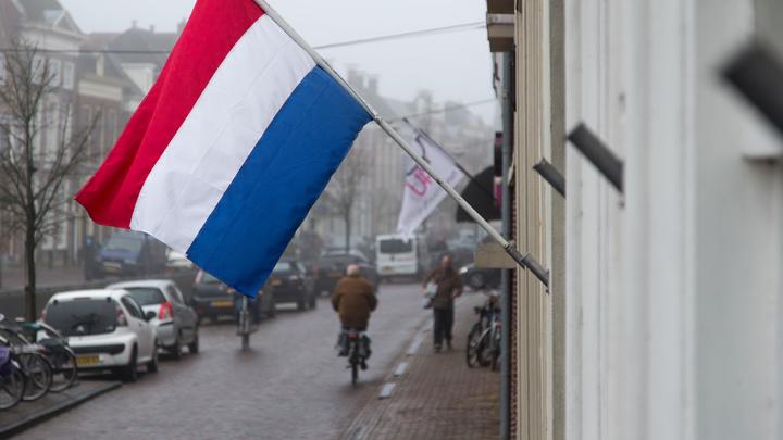 В отличие от Обамы: В посольстве Нидерландов в Москве не испугались детской присыпки