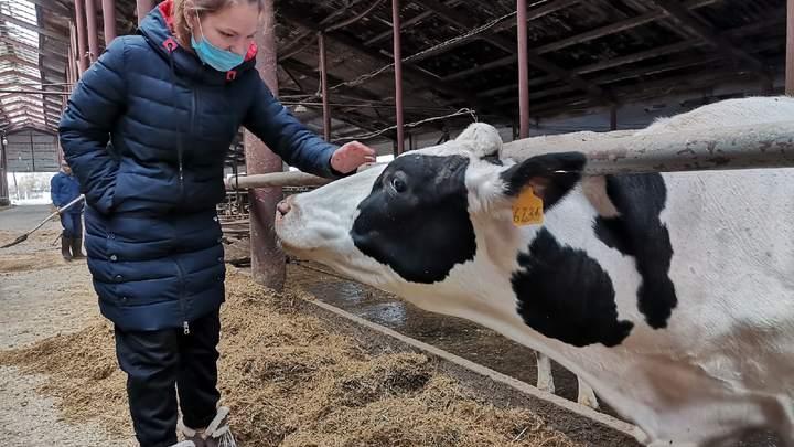 Во Владимирской области туристов поведут на заводы и фермы