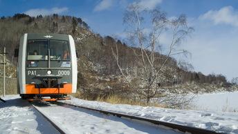 Зайцам в России официально разрешат ехать без билета