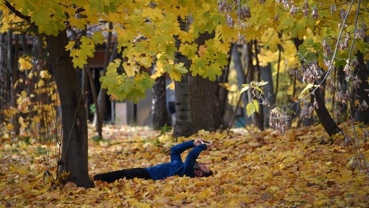 Народные приметы на Покров Пресвятой Богородицы: какой будет зима во Владимирской области