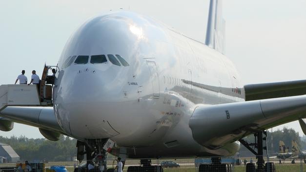 Птица чуть было не сбила украинский самолет над Киевом