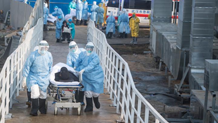 Коронавирус обнаружен у пассажиров круизного лайнера. На борту есть граждане России