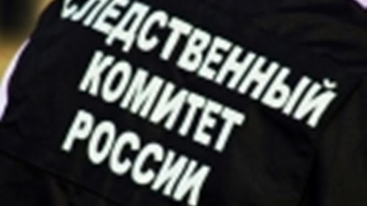 Бастрыкин «вмешался» в конфликт экс-супруги Пьехи и жены судьи Безбородова: возбуждено дело
