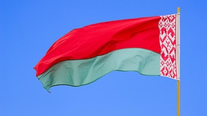 Минск передал в Германию материалы на террориста «Диса»