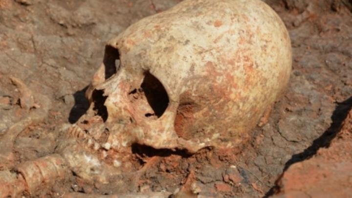 Копнули ковшом поглубже: в Карелии нашли останки 140 человек