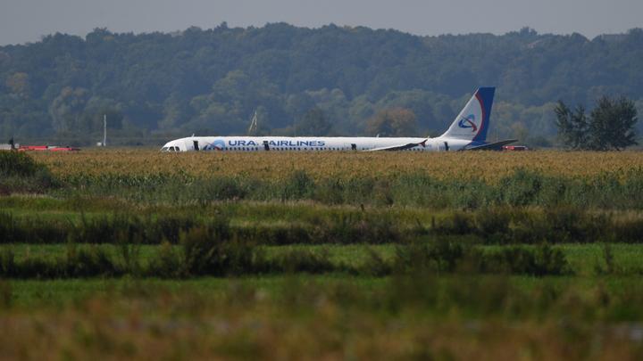 В один ряд с Нурбагандовым: Слова пилота А321 перед посадкой на кукурузное поле причислили к символам эпохи
