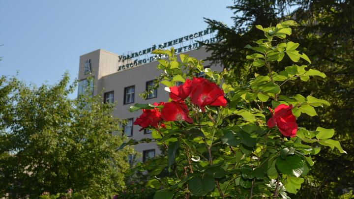 В Свердловской области прекращает основную деятельность уникальная больница