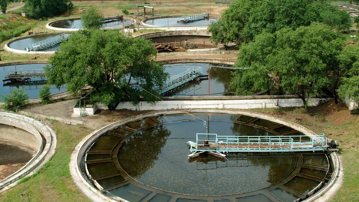 Экологи потребовали проверить сточные воды на наличие коронавируса в Свердловской области