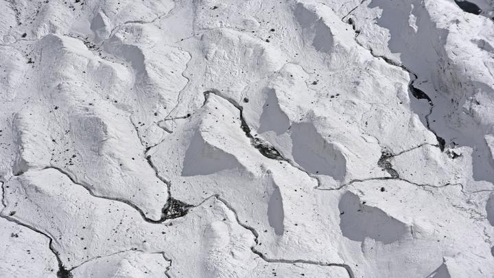 Под ледником Антарктиды обнаружили странных животных