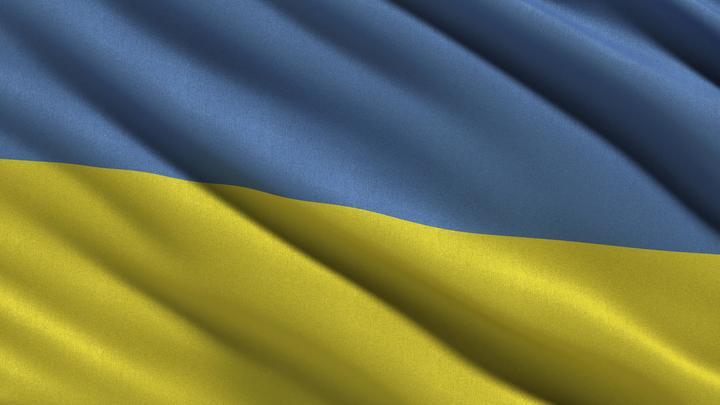 На Украине после пинка ЕС начались обыски неонацистов С14, поджигавших цыганские лагеря