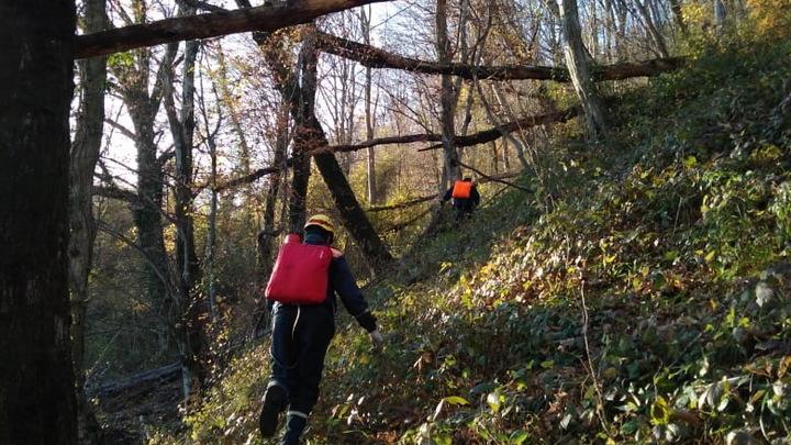 В Сочи спасатели помогли потушить лесной пожар